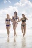 Young women in bikinis in the sea royalty free stock photo