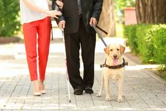 Young woman and blind man with guide dog stock photos