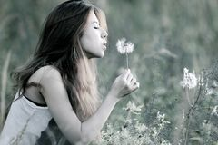 Young women blowing dandelion Stock Photos