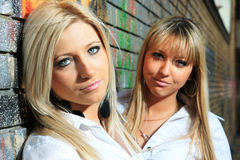 Young women with a brick wall Royalty Free Stock Images