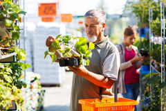 Young woman buying flowers at a garden center Stock Images
