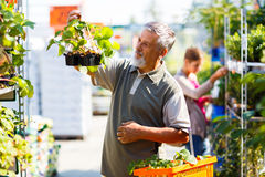 Young woman buying flowers at a garden center Royalty Free Stock Image