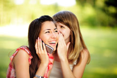 Young women chattin on cell phone. Stock Image
