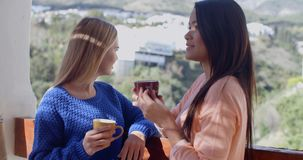Young women chatting on an open-air patio. Two attractive young women standing with mugs of coffee chatting on an open-air patio  upper body side view stock video