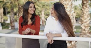 Young women chatting in a tropical urban park. Two attractive young women chatting in a tropical urban park standing leaning on a rail laughing and joking stock footage