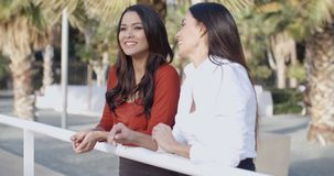 Young women chatting in a tropical urban park. Two attractive young women chatting in a tropical urban park standing leaning on a rail laughing and joking stock video footage