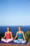 Young Women Doing Yoga Royalty Free Stock Images
