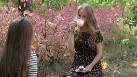Young women drink tea and talking with girlfriend. Beautiful young women smiling, drinking tea and talking with girlfriend in the autumn forest FullHD stock footage