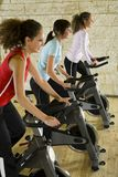 Young women on exercise bikes Stock Photo