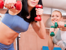 Young women exercising with dumbbells Stock Photography