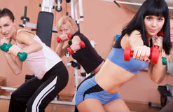 Young women exercising with dumbbells Stock Photo