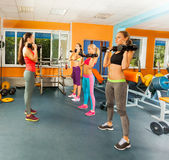 Young women exercising with dumbbells Royalty Free Stock Photo