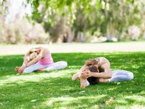 Young women exercising in the park. Healthy and fit young women doing yoga in the park Royalty Free Stock Photo