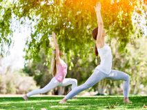 Young women exercising in the park. Healthy and fit young women doing yoga in the park Royalty Free Stock Image