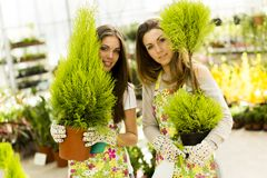 Young women in flower garden Royalty Free Stock Photo