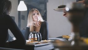 Young women friends talking in cafe, waiter brings burger royalty free stock images