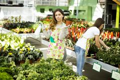 Young women in garden Royalty Free Stock Images