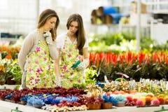 Young women in the garden Royalty Free Stock Photos
