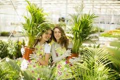 Young women in the garden Stock Photo