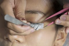 Young woman gets artificial lash treatment stock images