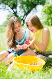 Young women girl friends harvested strawberries Royalty Free Stock Photography