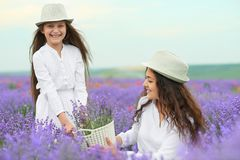 Young woman and girl are in the lavender field, beautiful summer landscape with red poppy flowers Royalty Free Stock Photos