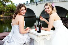 Young Women in Gowns Sharing a Drink Royalty Free Stock Images