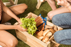 Young women holding ingredients for barbecue from picnic basket Stock Photo