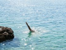 Young women jump into water in Croatia royalty free stock images