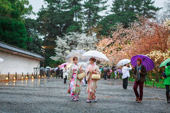 Young women in kimono dress. At Nijo Castle in Kyoto Japan Stock Photography