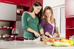 Young women in the kitchen. Pretty young women in the kitchen Royalty Free Stock Photo