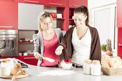 Young women in the kitchen. Pretty young women in the kitchen Stock Image