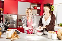 Young women in the kitchen. Young women preparing food in the kitchen Royalty Free Stock Image