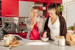 Young women in the kitchen. Young women preparing meal in the kitchen Royalty Free Stock Image
