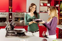Young women in the kitchen. Young women preparing meal in the kitchen Royalty Free Stock Photography