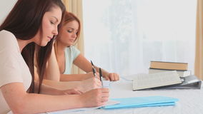 Young women learning together stock footage