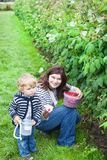 Young woman and little toddler boy picking raspberries Royalty Free Stock Photo