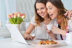 Young women looking at laptop Royalty Free Stock Photography