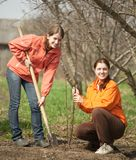 Young women making orchard Royalty Free Stock Photography