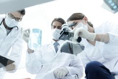 Scientists conducting research in a lab environment. Young women medical researcher looking through microscope in laboratory Royalty Free Stock Image