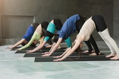 Young women and men in yoga class, doing stretching exercises royalty free stock images