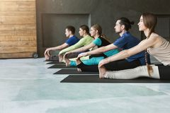 Young women and men in yoga class, doing stretching exercises stock photo