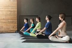 Young women and men in yoga class, relax meditation pose royalty free stock photo