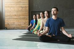 Young women and men in yoga class, relax meditation pose Royalty Free Stock Photos