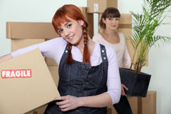 Young women moving. Young women on moving day Royalty Free Stock Images