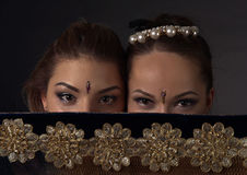 Young women in the national Indian costume Royalty Free Stock Image