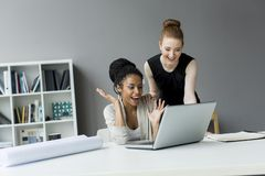 Young women in office Royalty Free Stock Photography