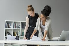 Young women in office Royalty Free Stock Image