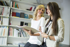Young women in the office Stock Photos