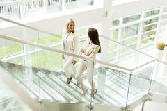 Young women in the office Stock Image
